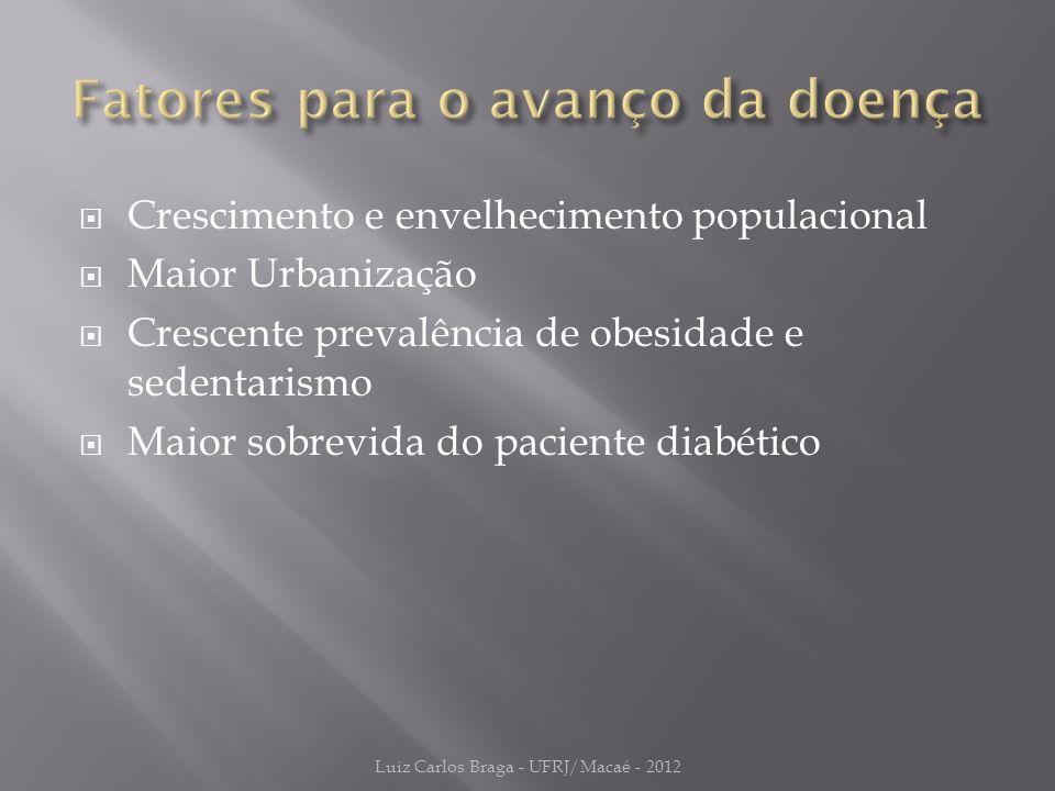  Crescimento e envelhecimento populacional  Maior Urbanização  Crescente prevalência de obesidade e sedentarismo  Maior sobrevida do paciente diabético Luiz Carlos Braga - UFRJ/Macaé - 2012