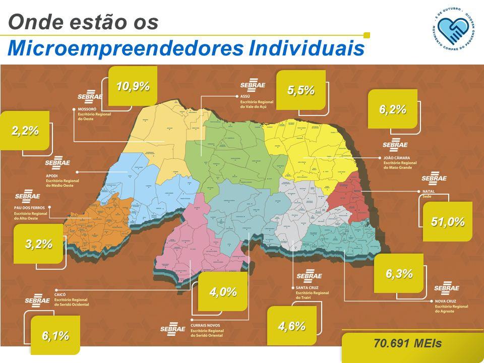 Onde estão os Microempreendedores Individuais 70.691 MEIs 10,9%10,9% 5,5%5,5% 2,2%2,2% 6,2%6,2% 51,0%51,0% 3,2%3,2% 6,1%6,1% 4,0%4,0% 6,3%6,3% 4,6%4,6%