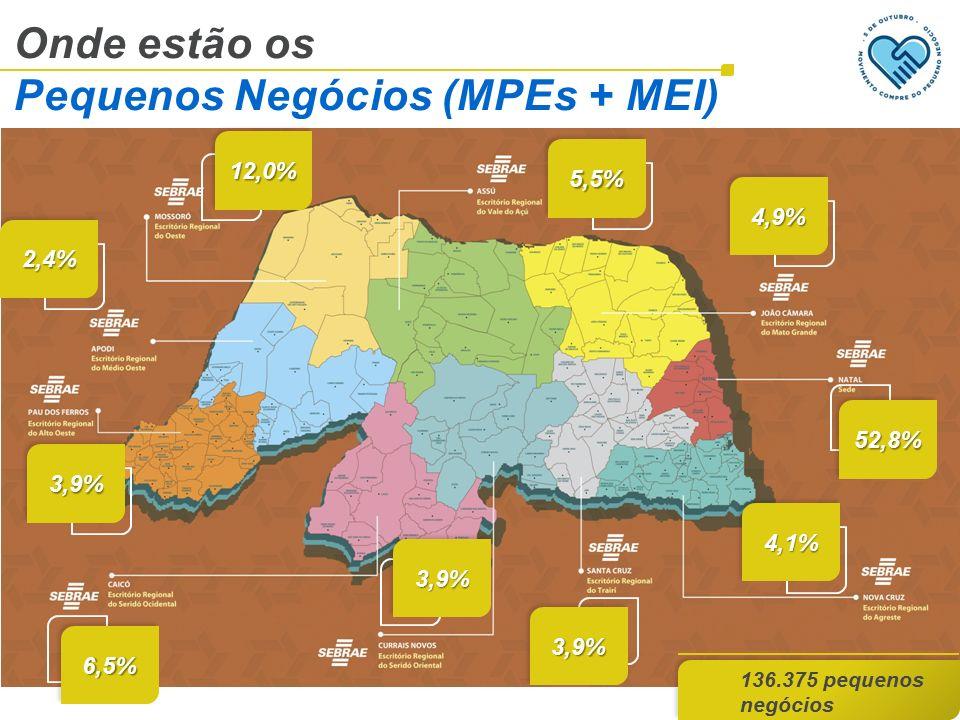Onde estão os Pequenos Negócios (MPEs + MEI) 136.375 pequenos negócios 12,0%12,0% 5,5%5,5% 2,4%2,4% 4,9%4,9% 52,8%52,8% 3,9%3,9% 6,5%6,5% 3,9%3,9% 4,1%4,1% 3,9%3,9%