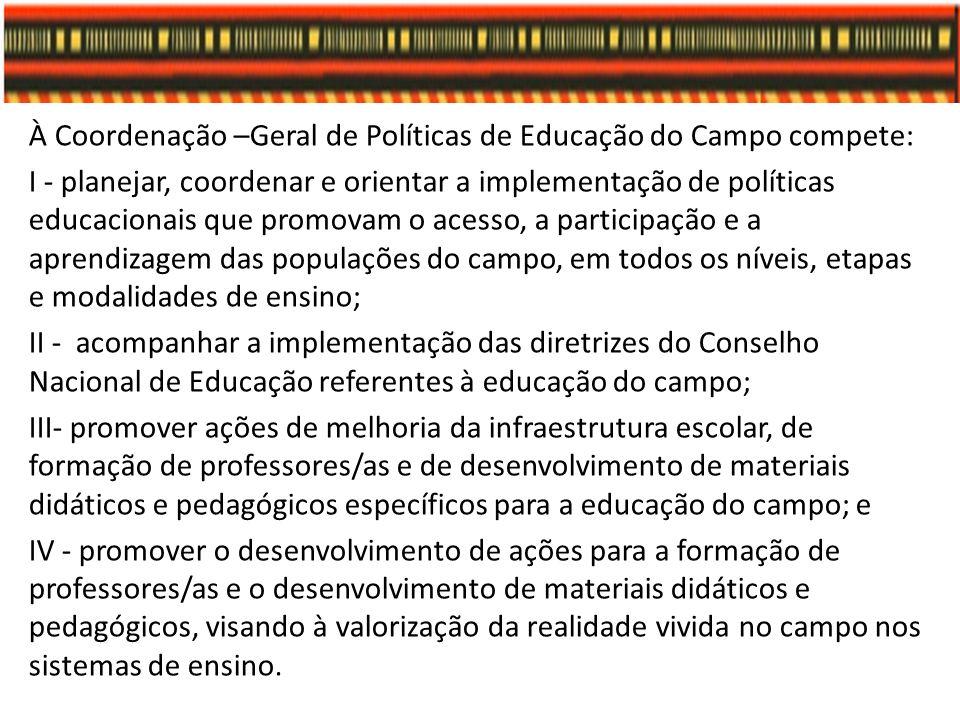 À Coordenação –Geral de Políticas de Educação do Campo compete: I - planejar, coordenar e orientar a implementação de políticas educacionais que promo
