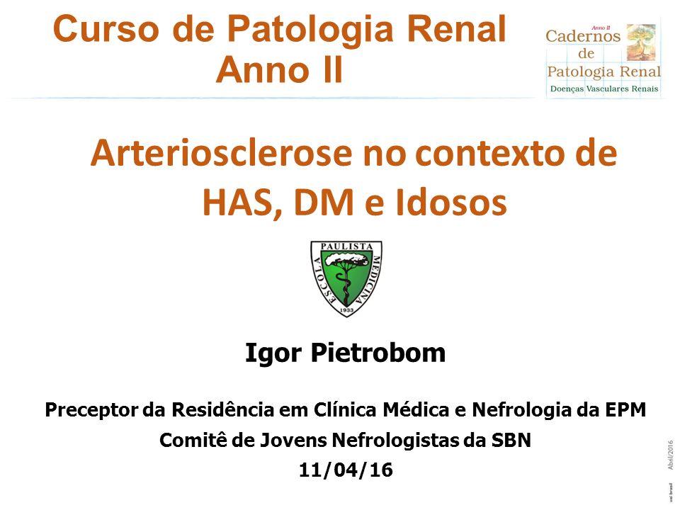 Curso de Patologia Renal Anno II Igor Pietrobom Preceptor da Residência em Clínica Médica e Nefrologia da EPM Comitê de Jovens Nefrologistas da SBN 11