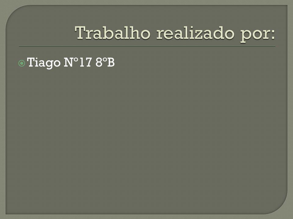  Tiago Nº17 8ºB