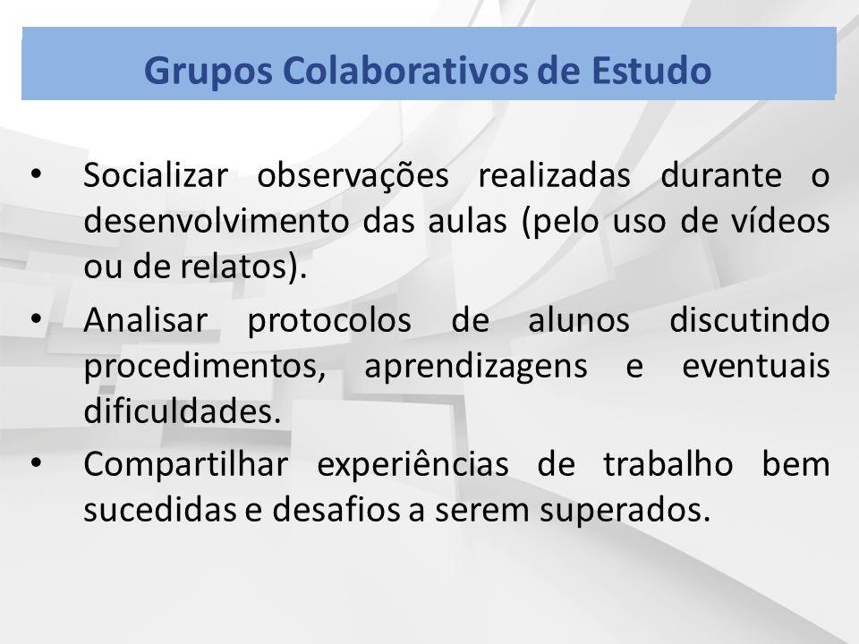 Socializar observações realizadas durante o desenvolvimento das aulas (pelo uso de vídeos ou de relatos). Analisar protocolos de alunos discutindo pro