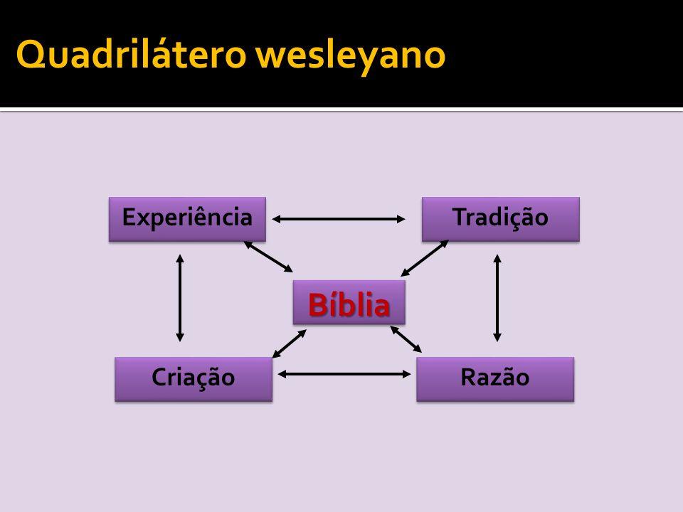 Experiência Tradição Razão BíbliaBíblia Criação Quadrilátero wesleyano