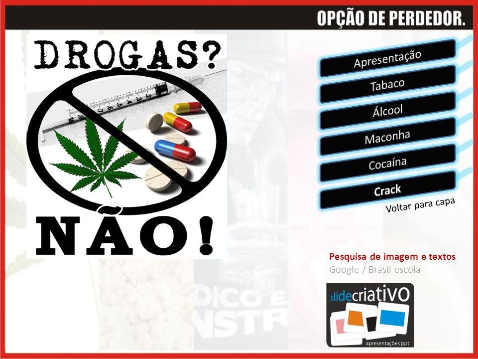 Voltar para capa Pesquisa de imagem e textos Google / Brasil escola