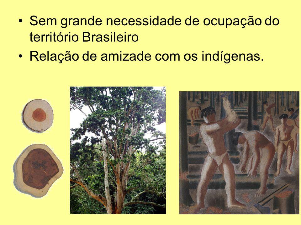 Sem grande necessidade de ocupação do território Brasileiro Relação de amizade com os indígenas.