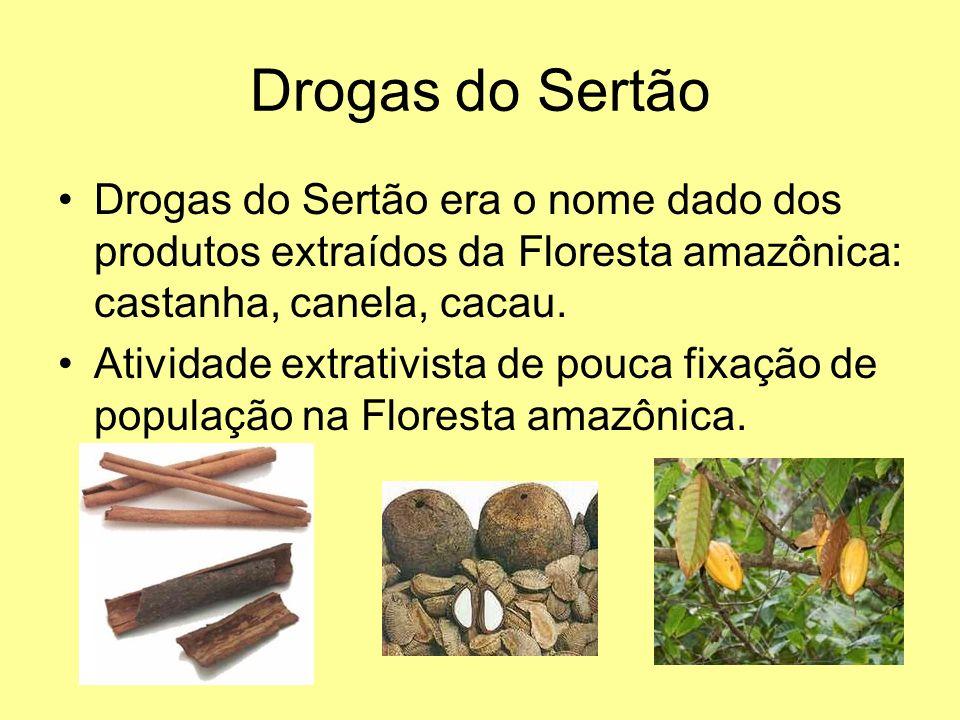 Drogas do Sertão Drogas do Sertão era o nome dado dos produtos extraídos da Floresta amazônica: castanha, canela, cacau.