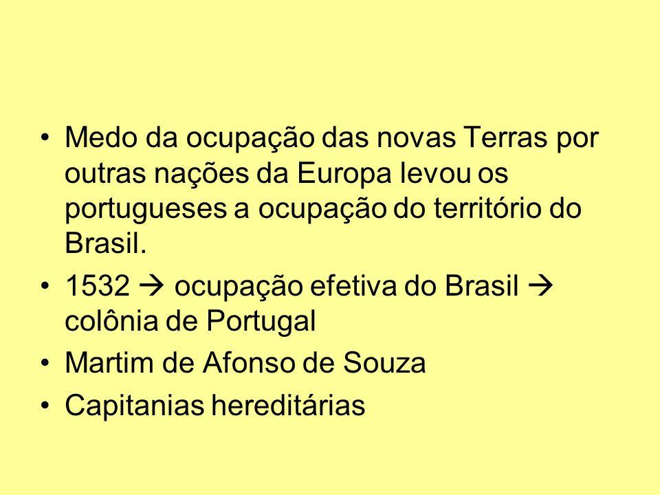 Medo da ocupação das novas Terras por outras nações da Europa levou os portugueses a ocupação do território do Brasil.