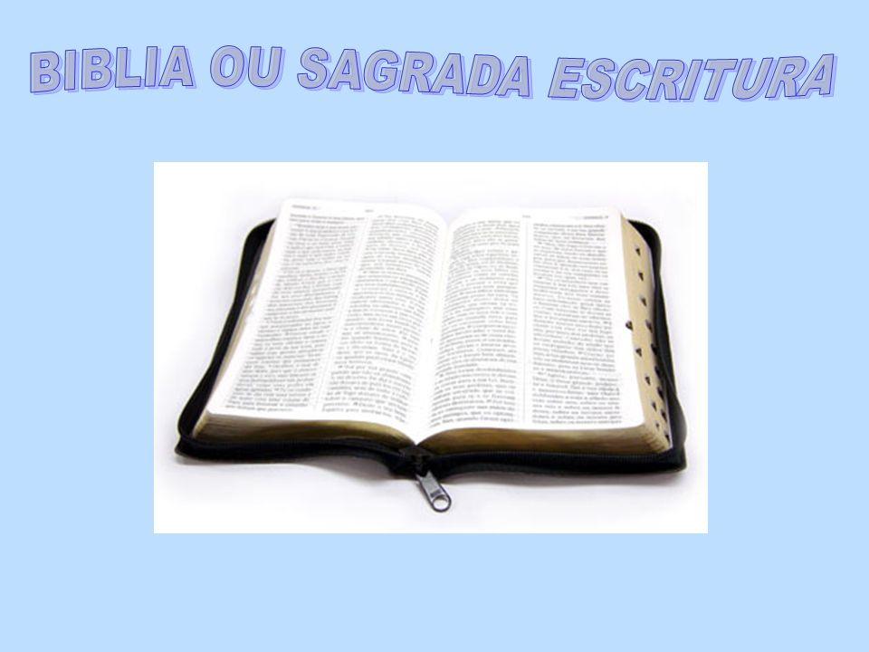 Para saber se a Bíblia é católica ou não, além dos livros a menos, verificar se nas primeiras páginas, ela apresenta a autorização de um Bispo com a palavra Imprima-se .