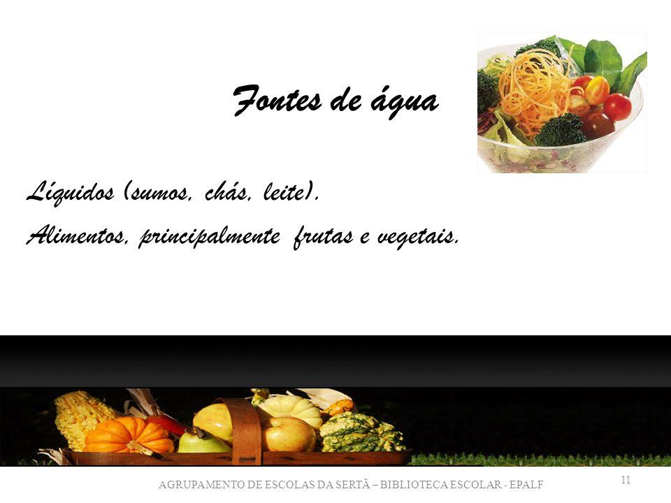 Fontes de água Líquidos (sumos, chás, leite). Alimentos, principalmente frutas e vegetais.