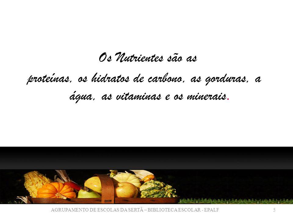 Os Nutrientes são as proteínas, os hidratos de carbono, as gorduras, a água, as vitaminas e os minerais.