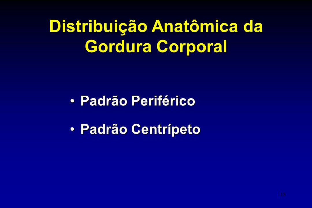 18 Distribuição Anatômica da Gordura Corporal Padrão PeriféricoPadrão Periférico Padrão CentrípetoPadrão Centrípeto