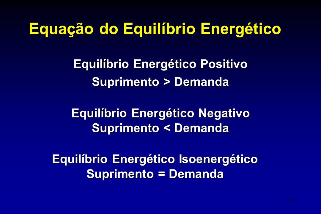 22 Equação do Equilíbrio Energético Equilíbrio Energético Positivo Suprimento > Demanda Equilíbrio Energético Negativo Suprimento < Demanda Equilíbrio