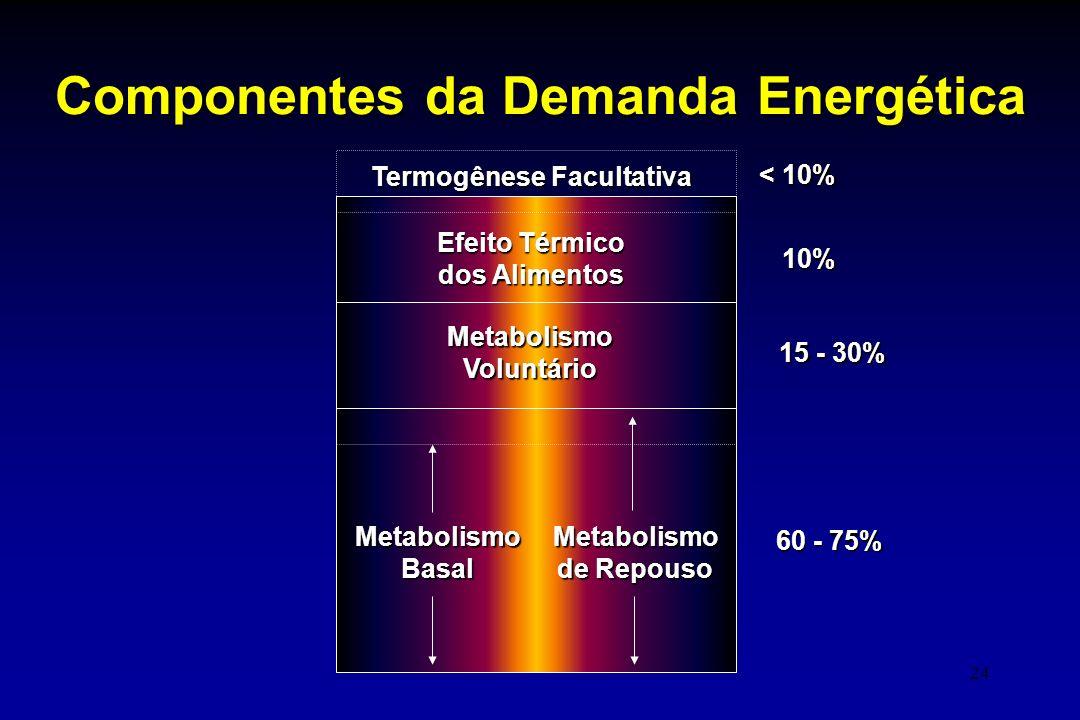 24 Componentes da Demanda Energética MetabolismoBasalMetabolismo de Repouso MetabolismoVoluntário Efeito Térmico dos Alimentos Termogênese Facultativa