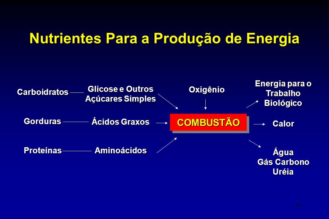 26 Nutrientes Para a Produção de Energia COMBUSTÃOCOMBUSTÃO CarboidratosGordurasProteínas Glicose e Outros Açúcares Simples Ácidos Graxos Aminoácidos