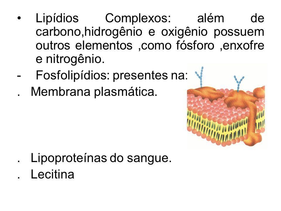 Lipídios Complexos: além de carbono,hidrogênio e oxigênio possuem outros elementos,como fósforo,enxofre e nitrogênio.