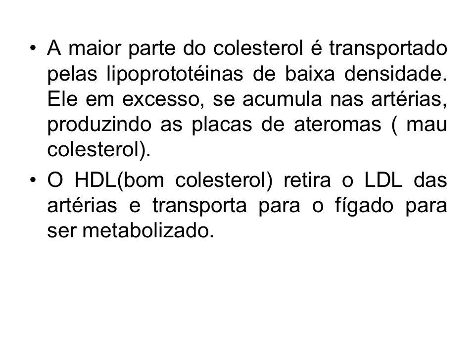 A maior parte do colesterol é transportado pelas lipoprototéinas de baixa densidade.