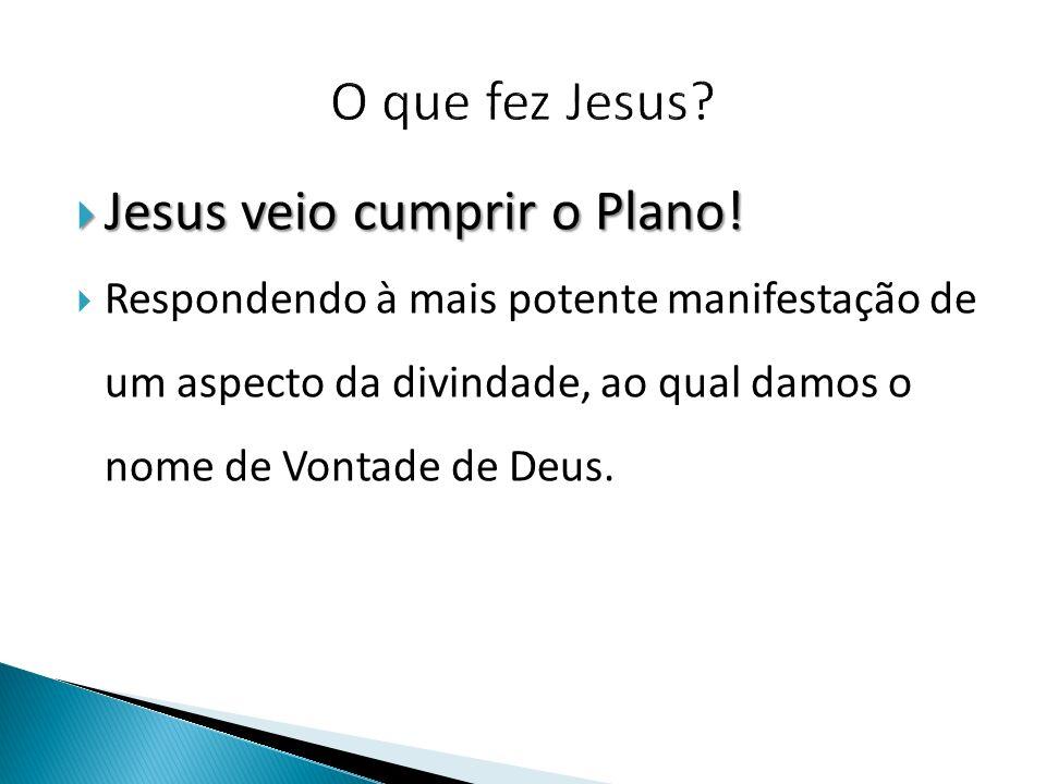  Jesus veio cumprir o Plano.