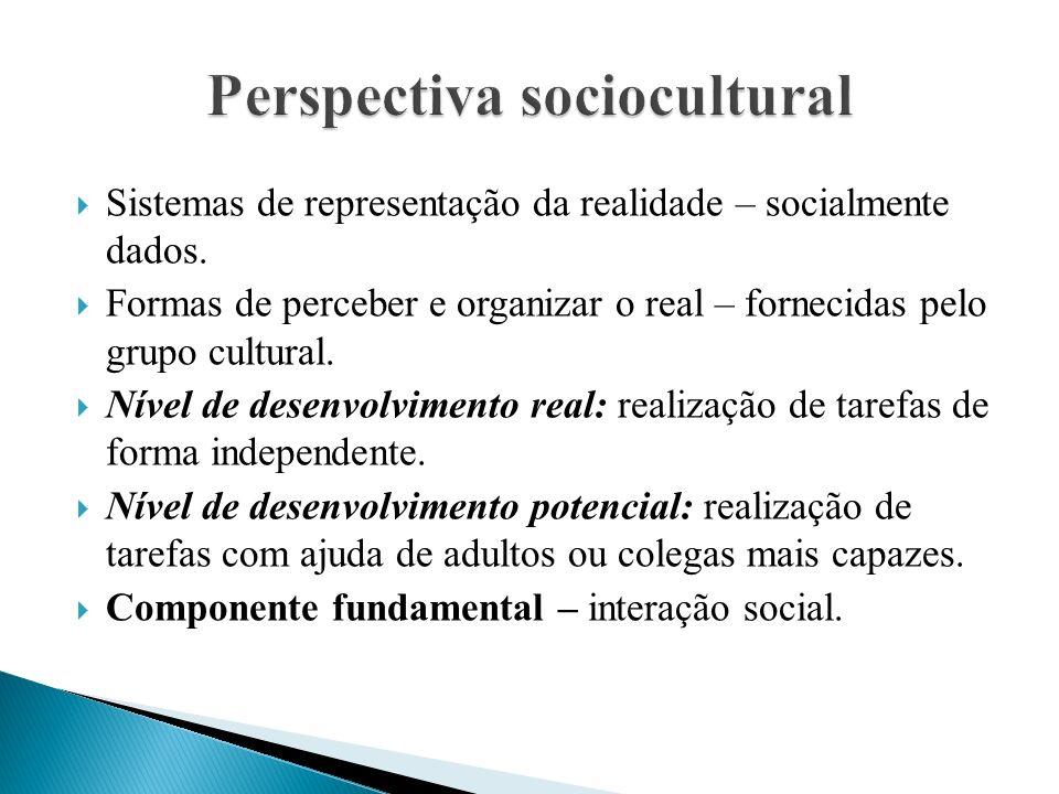  Sistemas de representação da realidade – socialmente dados.