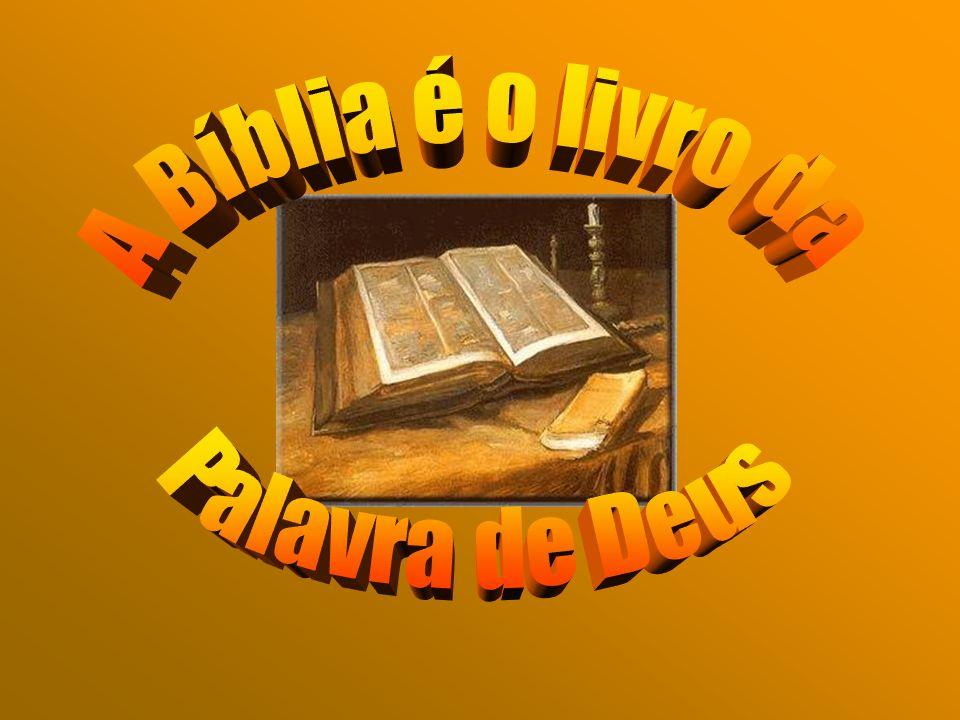 Os vinte e sete livros do Novo Testamento também estão divididos em livros históricos, como os Evangelhos, por exemplo o de S.