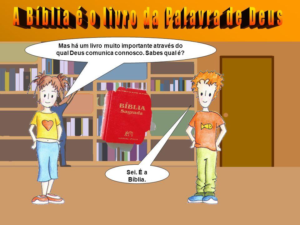 Os nossos livros da Escola são importantes porque comunicam saberes.