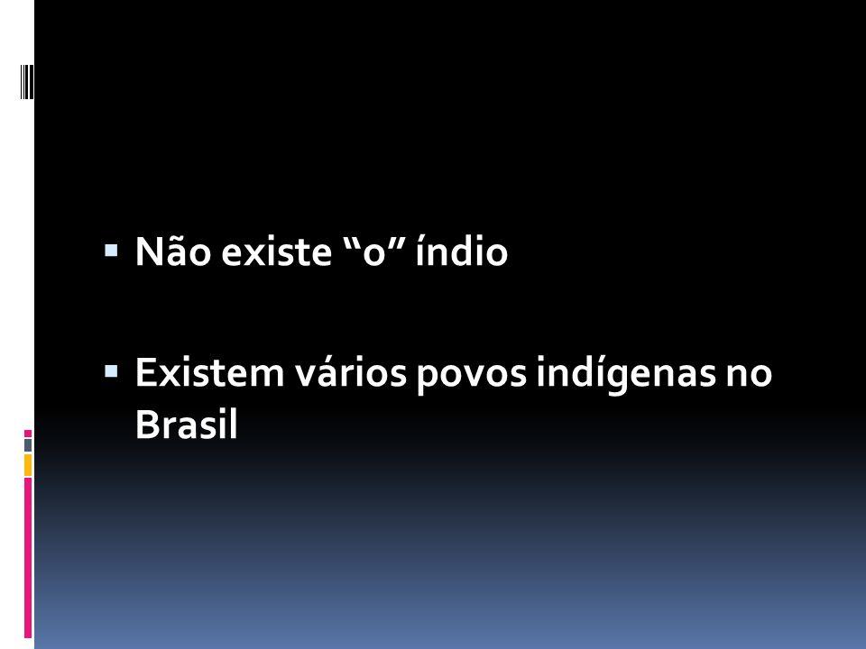  Não existe o índio  Existem vários povos indígenas no Brasil
