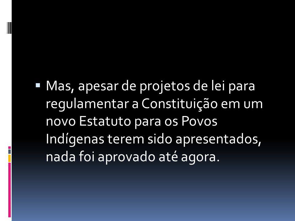  Mas, apesar de projetos de lei para regulamentar a Constituição em um novo Estatuto para os Povos Indígenas terem sido apresentados, nada foi aprovado até agora.