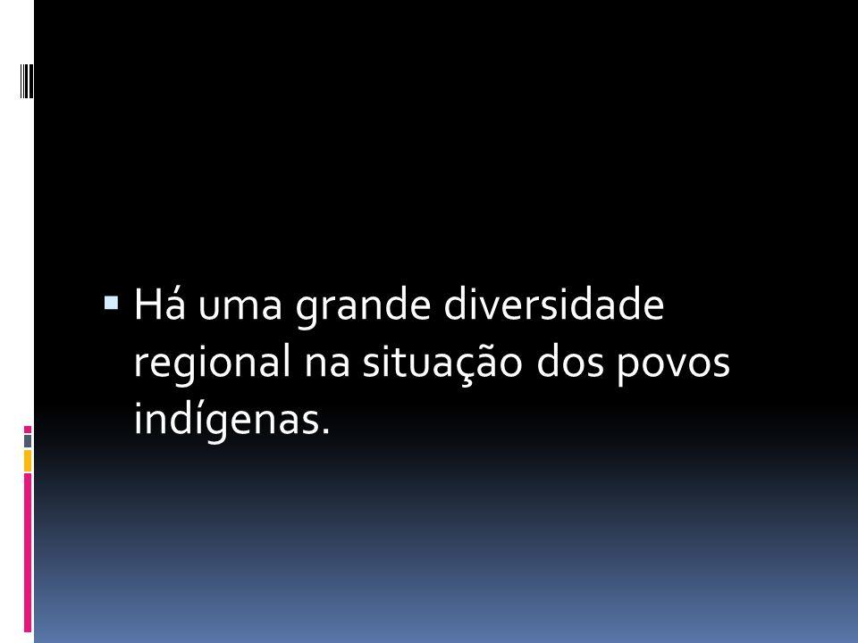  Há uma grande diversidade regional na situação dos povos indígenas.