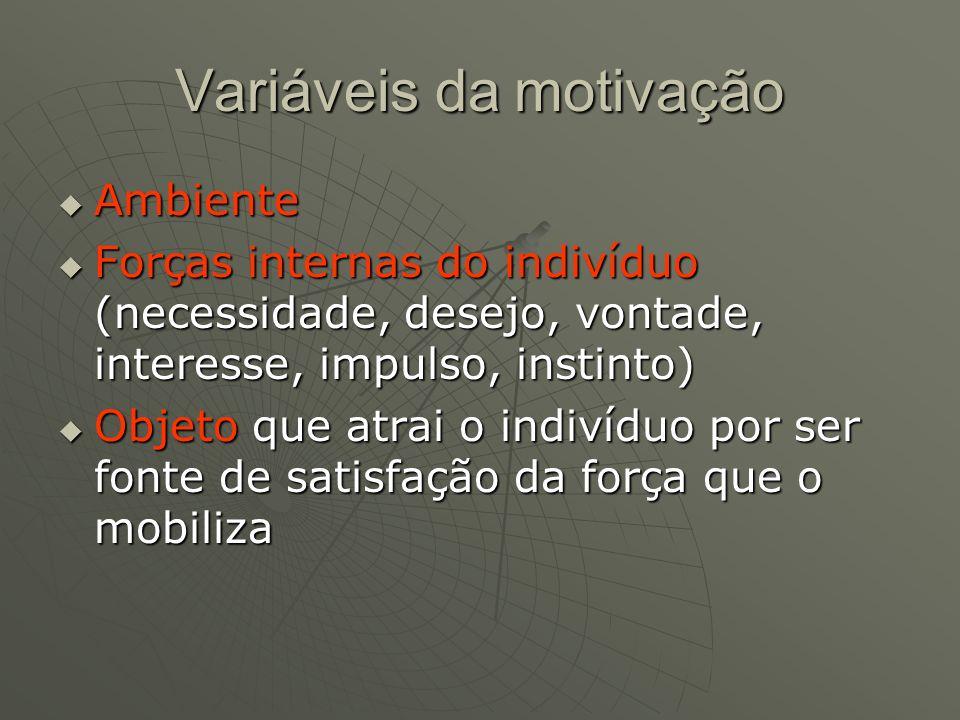Variáveis da motivação  Ambiente  Forças internas do indivíduo (necessidade, desejo, vontade, interesse, impulso, instinto)  Objeto que atrai o indivíduo por ser fonte de satisfação da força que o mobiliza