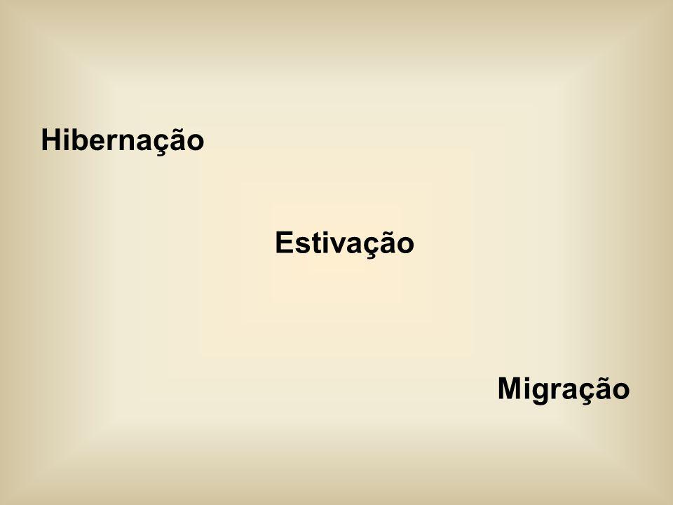 Hibernação Estivação Migração