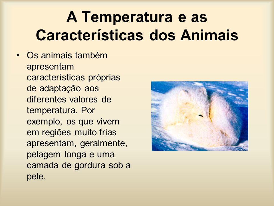 A Temperatura e as Características dos Animais Os animais também apresentam características próprias de adaptação aos diferentes valores de temperatura.