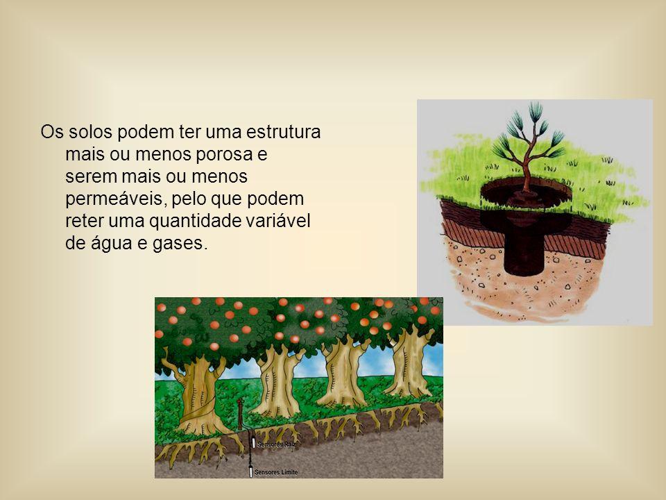 Os solos podem ter uma estrutura mais ou menos porosa e serem mais ou menos permeáveis, pelo que podem reter uma quantidade variável de água e gases.