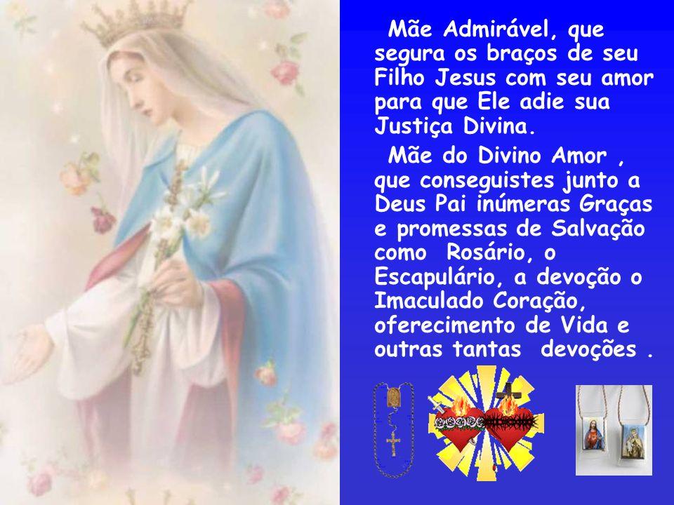 Mostra-nos Rainha da Paz, onde está escondida a verdadeira Paz tão almejada pela humanidade Rosa Mística que chora lágrimas de sangue por seus filhos tão ingratos, perdoai-lhes