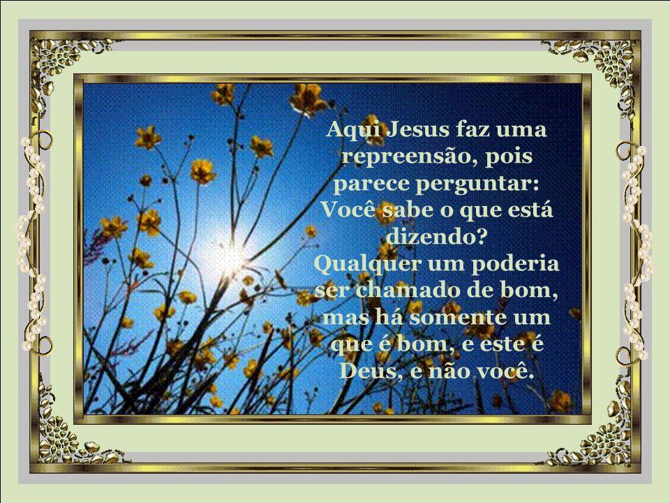 """""""Bom Mestre, que farei para herdar a vida eterna?"""" Jesus lhe respondeu: """"Por que você me chama bom? Não há ninguém que seja bom, a não ser somente Deu"""