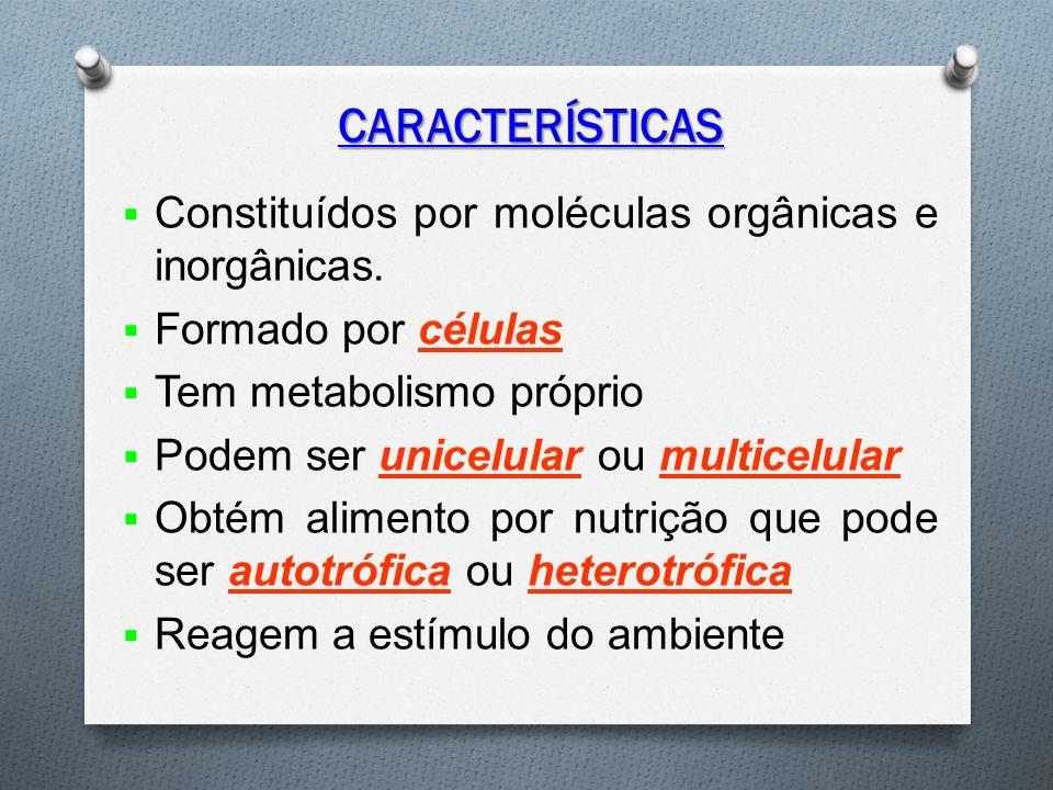 CARACTERÍSTICAS  Constituídos por moléculas orgânicas e inorgânicas.
