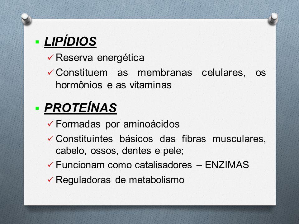  LIPÍDIOS Reserva energética Constituem as membranas celulares, os hormônios e as vitaminas  PROTEÍNAS Formadas por aminoácidos Constituintes básicos das fibras musculares, cabelo, ossos, dentes e pele; Funcionam como catalisadores – ENZIMAS Reguladoras de metabolismo