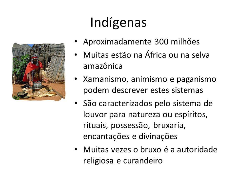 Indígenas Aproximadamente 300 milhões Muitas estão na África ou na selva amazônica Xamanismo, animismo e paganismo podem descrever estes sistemas São caracterizados pelo sistema de louvor para natureza ou espíritos, rituais, possessão, bruxaria, encantações e divinações Muitas vezes o bruxo é a autoridade religiosa e curandeiro