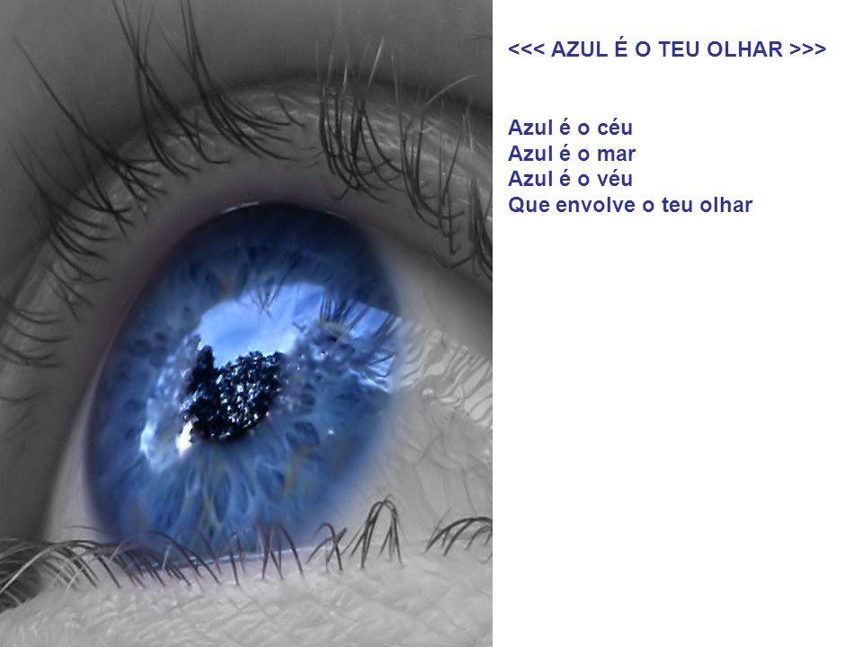 Teus olhos são pedras preciosas As mais belas e formosas Refletem harmonia e paz Teu olhar me seduz Meu lindo anjo de olhos azuis 05.04.2009