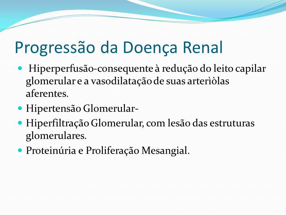 Progressão da Doença Renal Hiperperfusão-consequente à redução do leito capilar glomerular e a vasodilatação de suas arterìòlas aferentes.