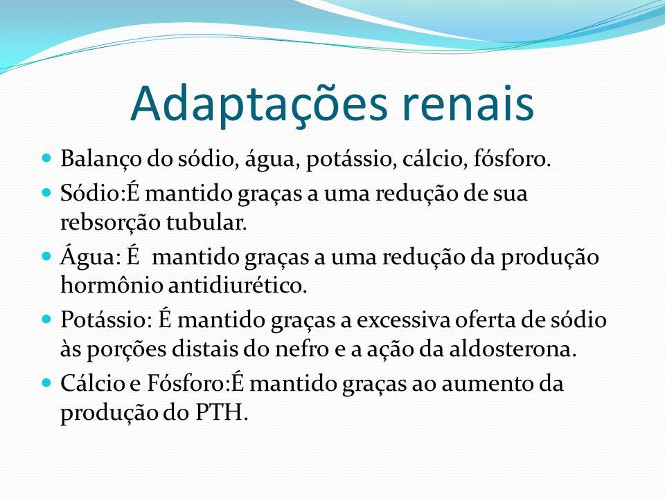 Adaptações renais Balanço do sódio, água, potássio, cálcio, fósforo.