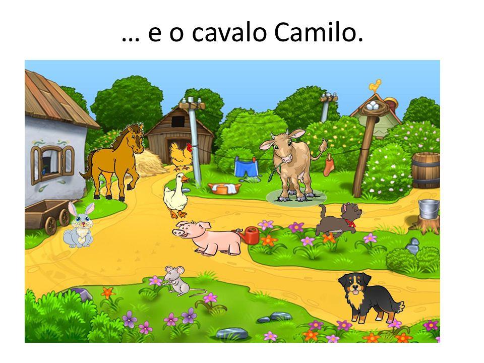 … e o cavalo Camilo.