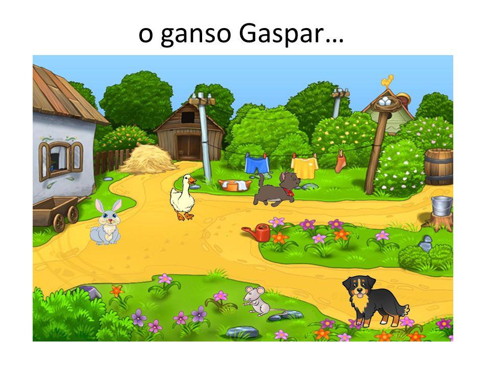 o ganso Gaspar…