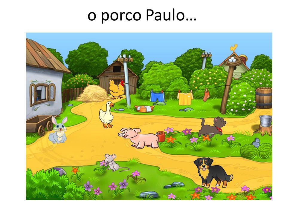 o porco Paulo…