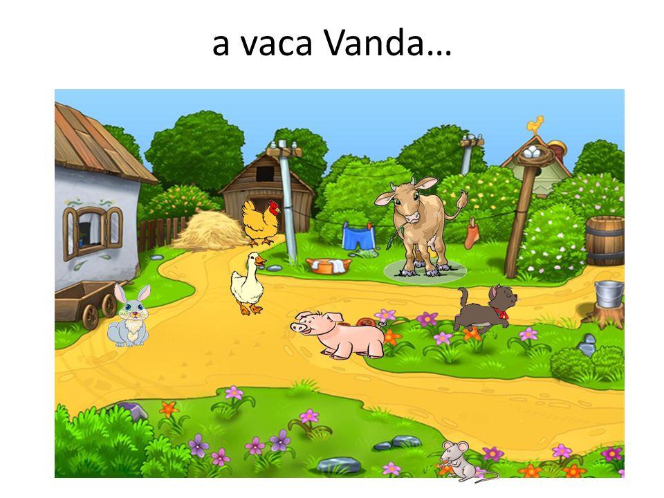 a vaca Vanda…