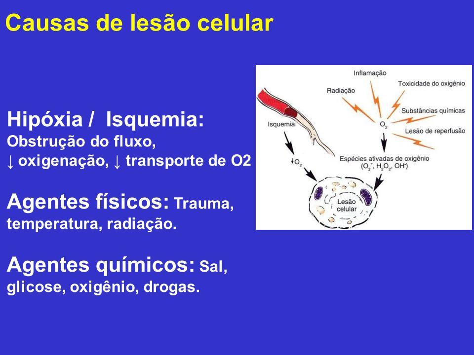 Hipóxia / Isquemia: Obstrução do fluxo, ↓ oxigenação, ↓ transporte de O2 Agentes físicos: Trauma, temperatura, radiação. Agentes químicos: Sal, glicos
