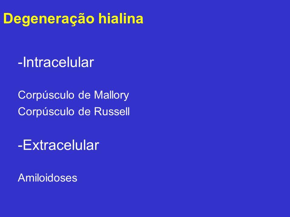 -Intracelular Corpúsculo de Mallory Corpúsculo de Russell -Extracelular Amiloidoses Degeneração hialina