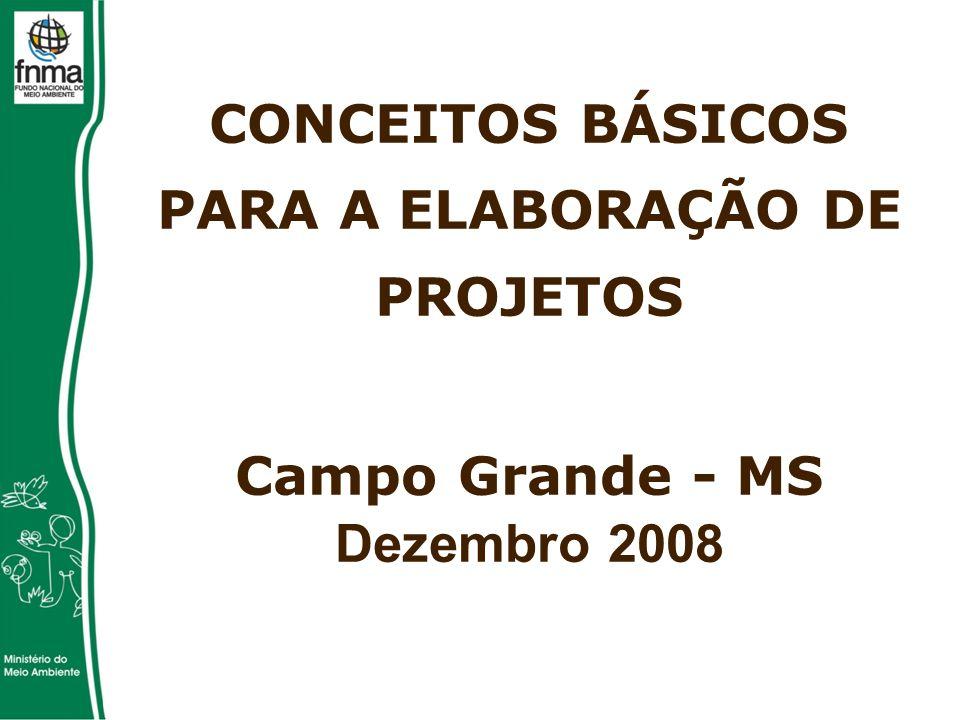 CONCEITOS BÁSICOS PARA A ELABORAÇÃO DE PROJETOS Campo Grande - MS Dezembro 2008