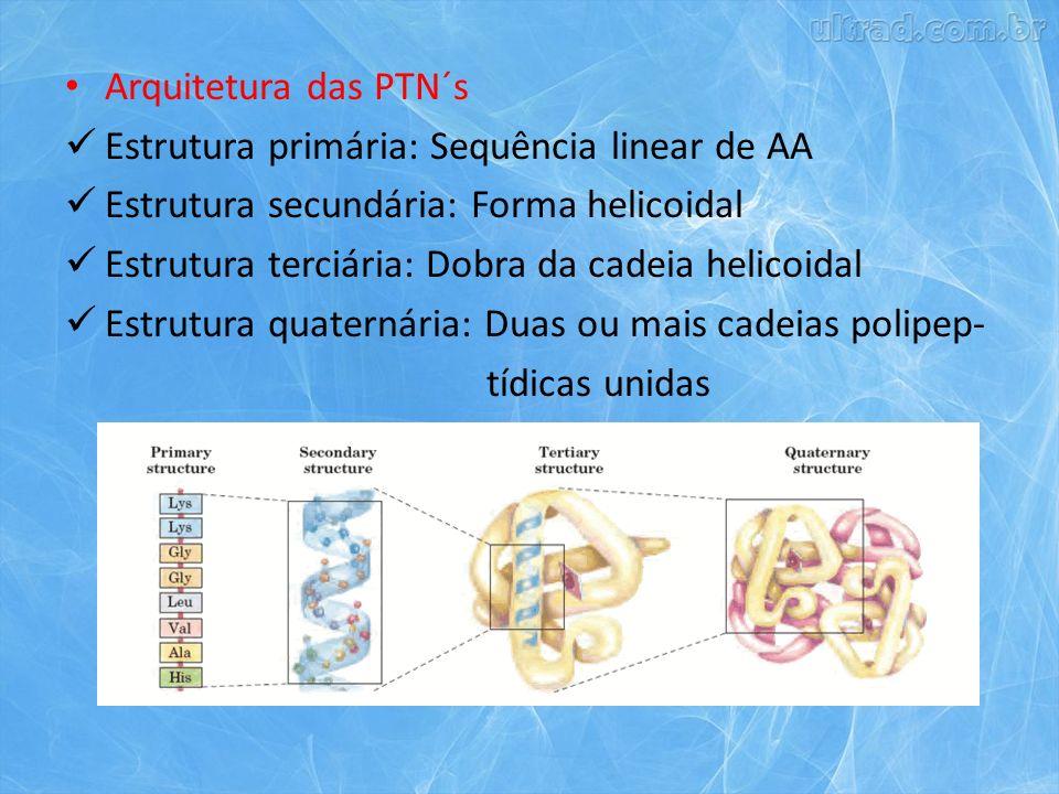 Arquitetura das PTN´s Estrutura primária: Sequência linear de AA Estrutura secundária: Forma helicoidal Estrutura terciária: Dobra da cadeia helicoidal Estrutura quaternária: Duas ou mais cadeias polipep- tídicas unidas