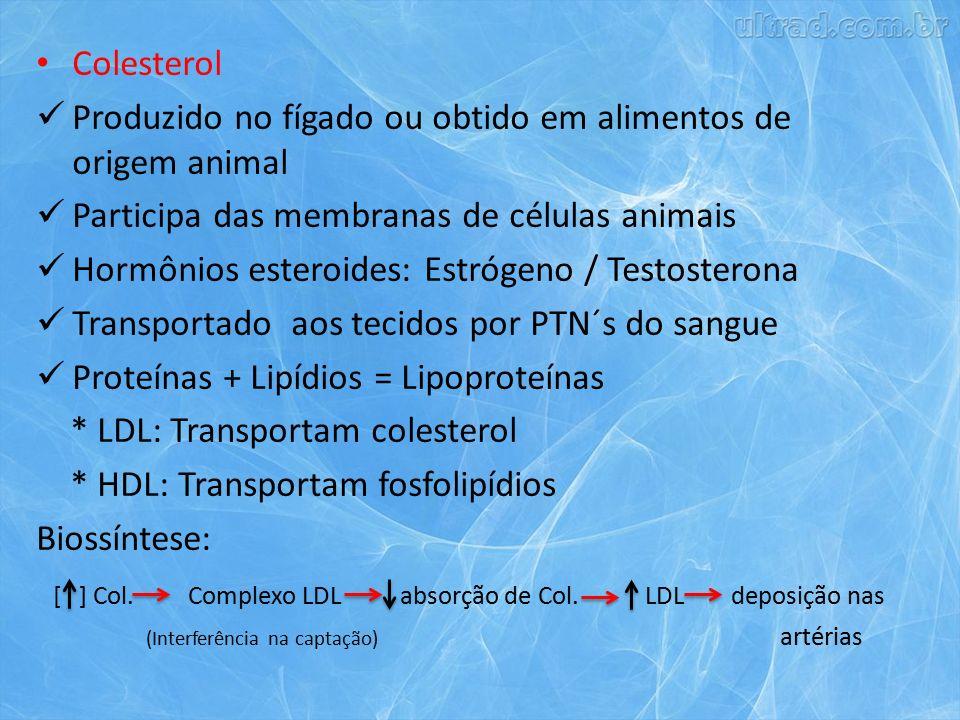 Colesterol Produzido no fígado ou obtido em alimentos de origem animal Participa das membranas de células animais Hormônios esteroides: Estrógeno / Testosterona Transportado aos tecidos por PTN´s do sangue Proteínas + Lipídios = Lipoproteínas * LDL: Transportam colesterol * HDL: Transportam fosfolipídios Biossíntese: [ ] Col.