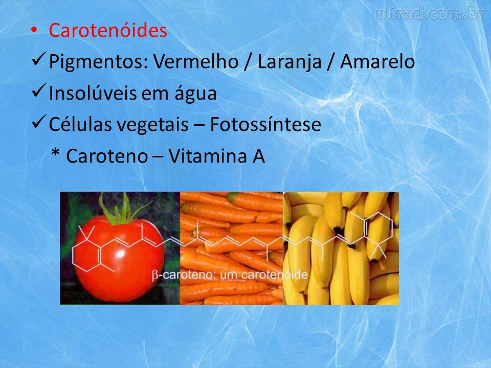 Carotenóides Pigmentos: Vermelho / Laranja / Amarelo Insolúveis em água Células vegetais – Fotossíntese * Caroteno – Vitamina A